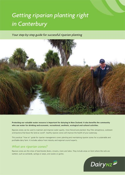Getting riparian planting right in Canterbury