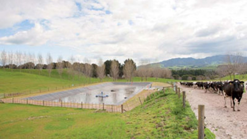 Effluent storage pond