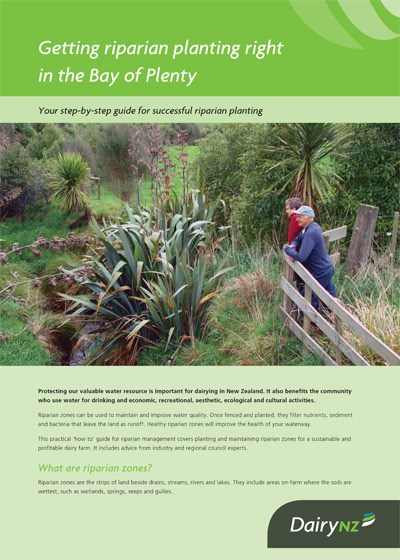Getting riparian planting right in the Bay of Plenty
