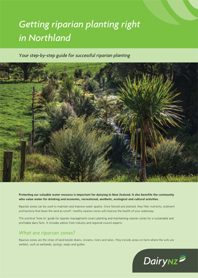 Getting riparian planting right in Northland