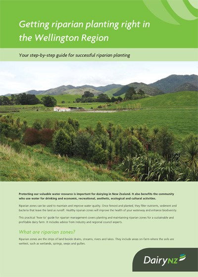 Getting riparian planting right in Wellington