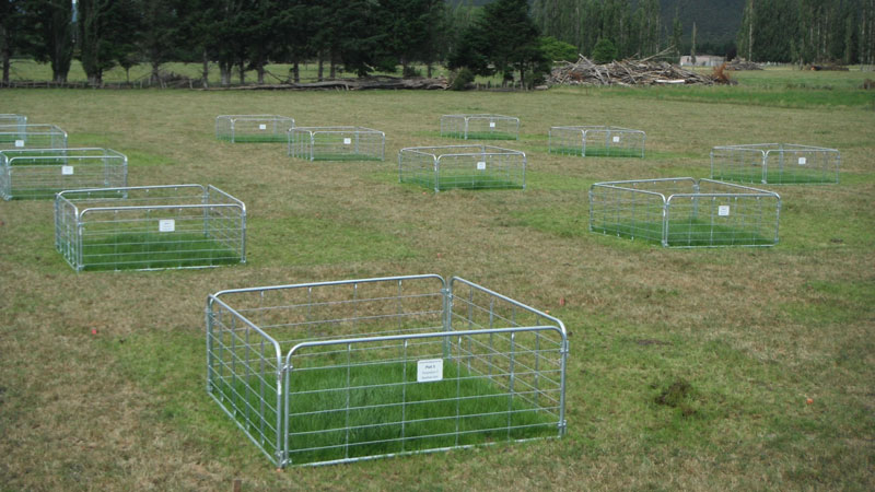 Pasture plots looked at soils mixed to a shallow or deep level.