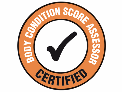 Certified Body Condition Score Assessor
