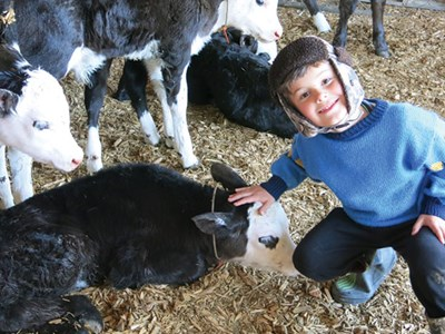 Isaac Tilbury from Hillview Christian School, Christchurch on a farm visit