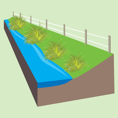 Low planting between fence and waterway