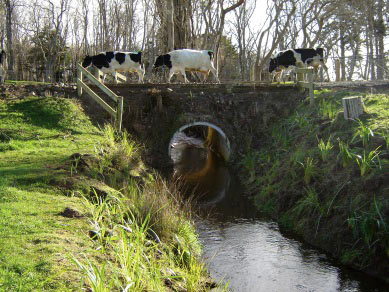 Single barrel circular culvert