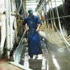 Smart water use in the milking shed