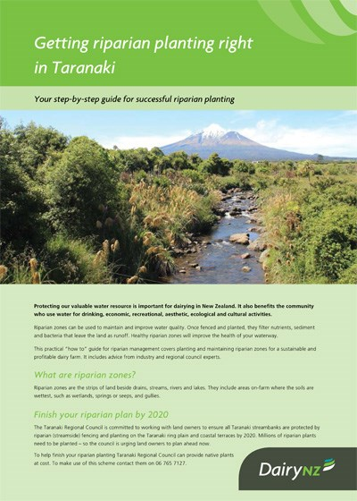 Getting riparian planting right in Taranaki