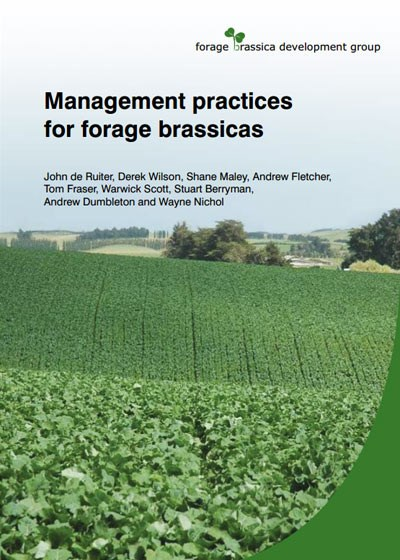 Management Practices for Forage Brassicas image