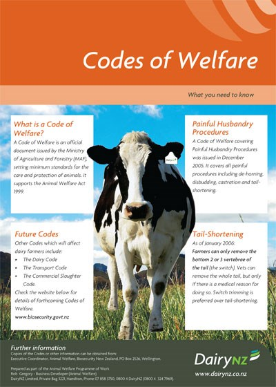 Codes of Welfare Poster
