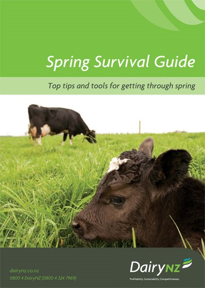 Spring Survival Guide