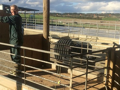 Central Southland sharemilker Sara Korteweg at the farm's new calf loading facilities.