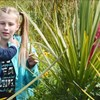 Waikato Wetlands Showcase