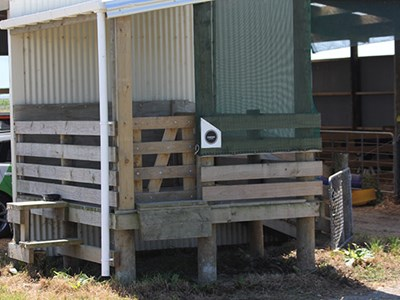 Home built pen in lee of shed for additional shelter