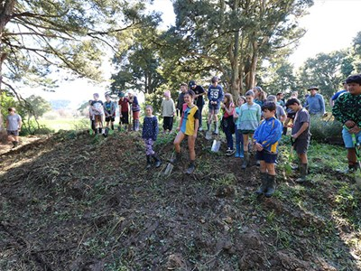 Kokopu School students help plant 400 riparians on a local dairy farm.