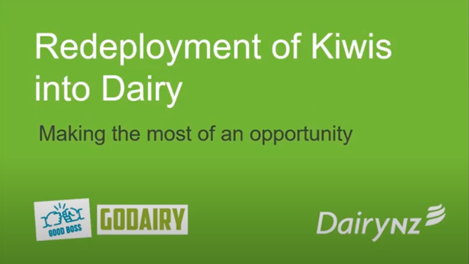 Redeployment of kiwis into dairy