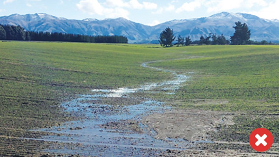 Critical source area cultivated, resulting in higher risk of soil, E. coli and phosphorus loss.