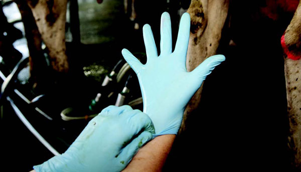 2: Hygiene is critical - wear clean gloves or wash hands.