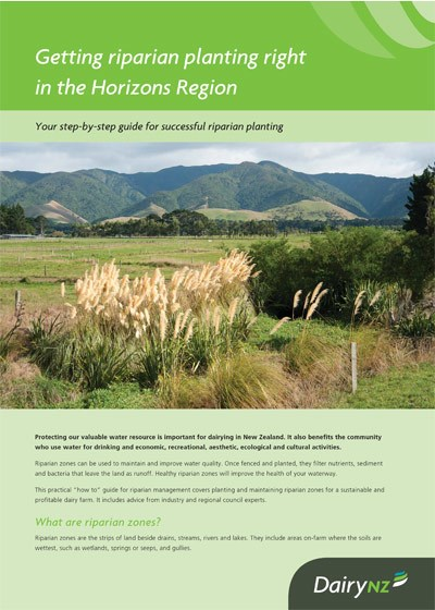 Getting riparian planting right in the Horizons Region