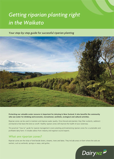 Getting riparian planting right in the Waikato