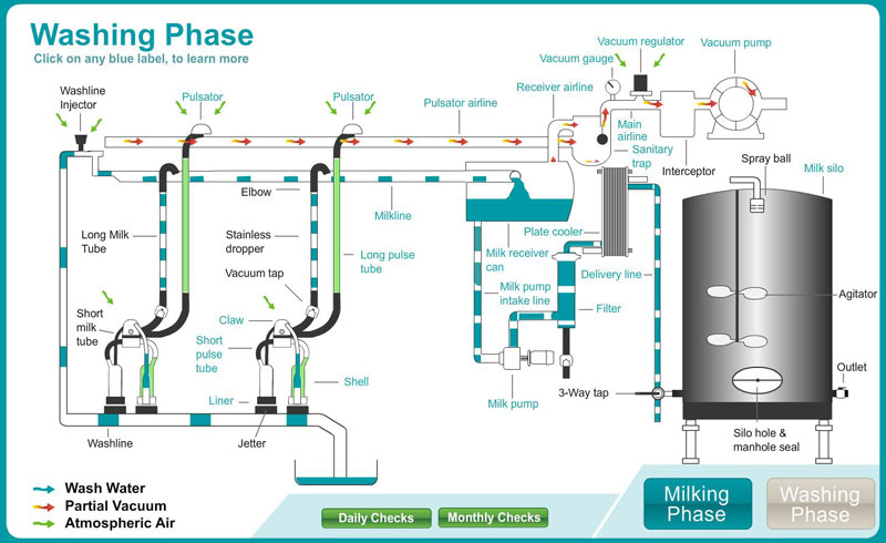 The Milking Plant Is At Heart Of Process And Understanding Basics How System Works Helpful For Anyone Cows